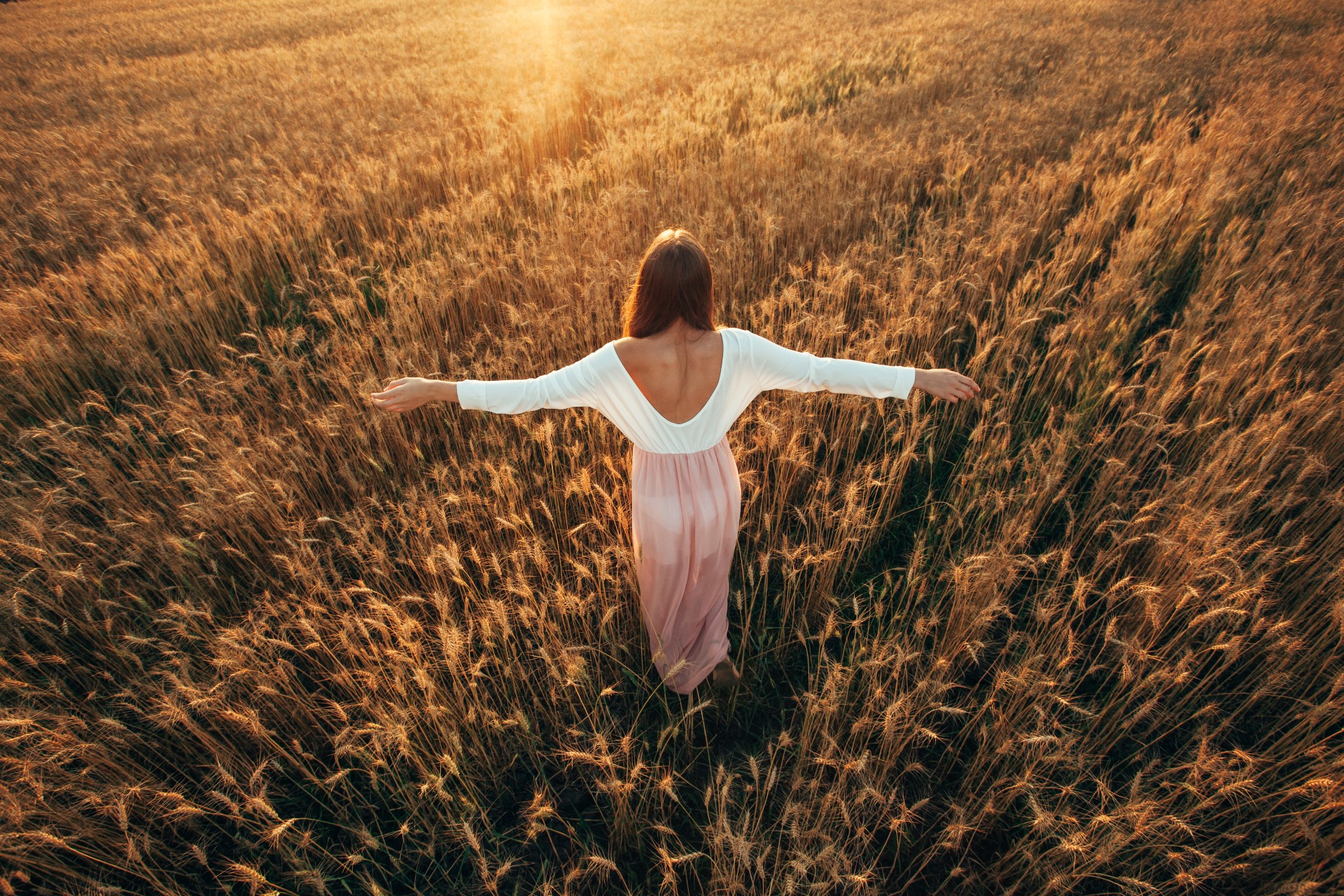Beautiful brunette lady in wheat field at sunset